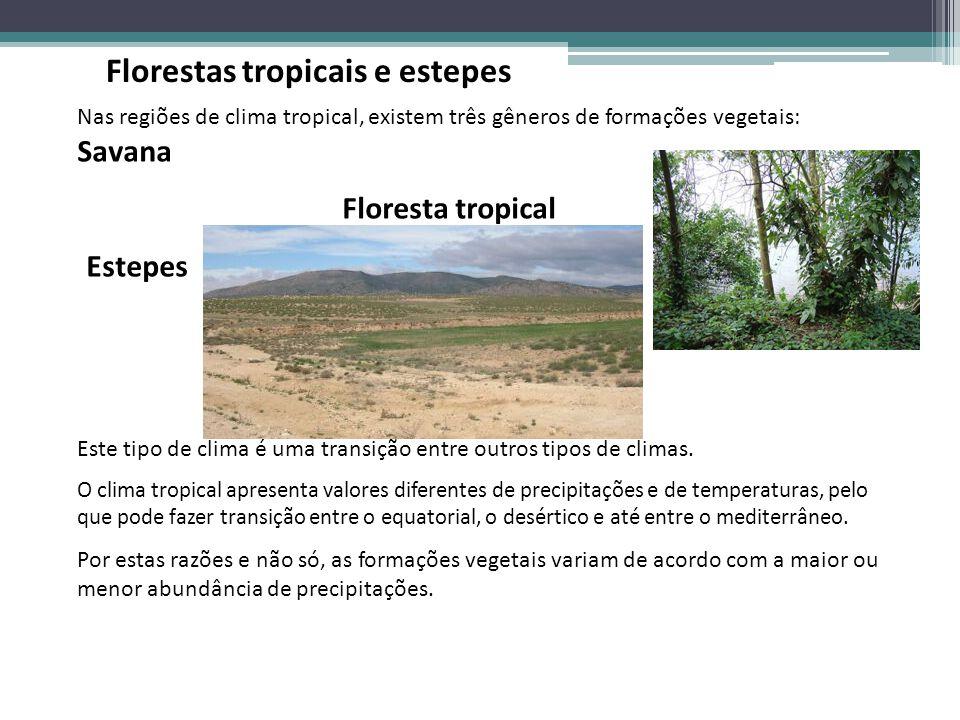 Nas regiões de clima tropical, existem três gêneros de formações vegetais: Savana Floresta tropical Estepes Este tipo de clima é uma transição entre o