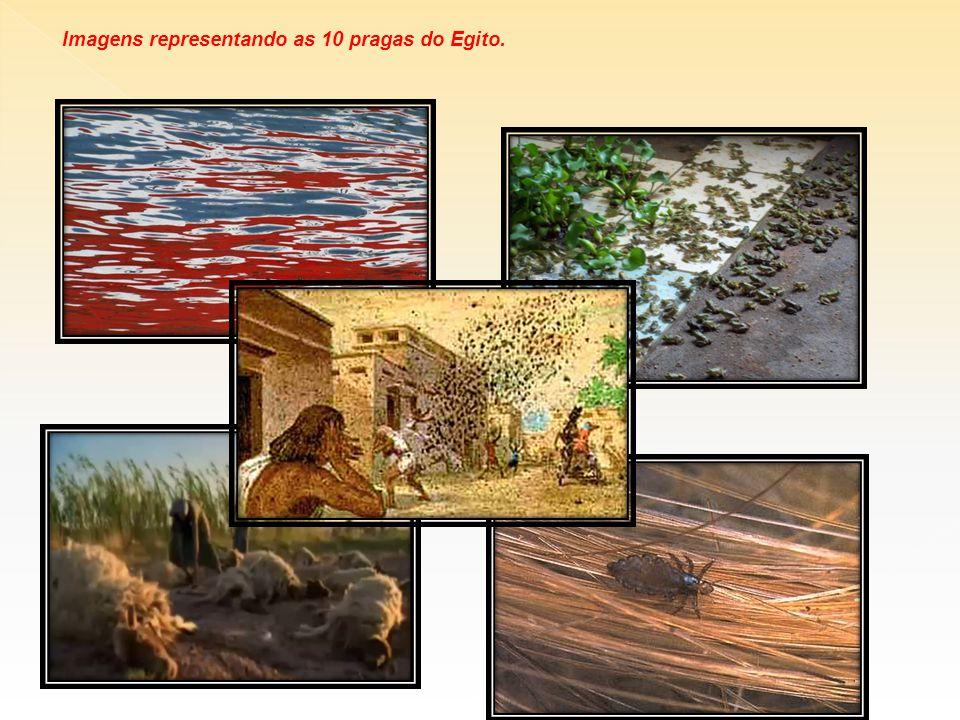 Imagens representando as 10 pragas do Egito.