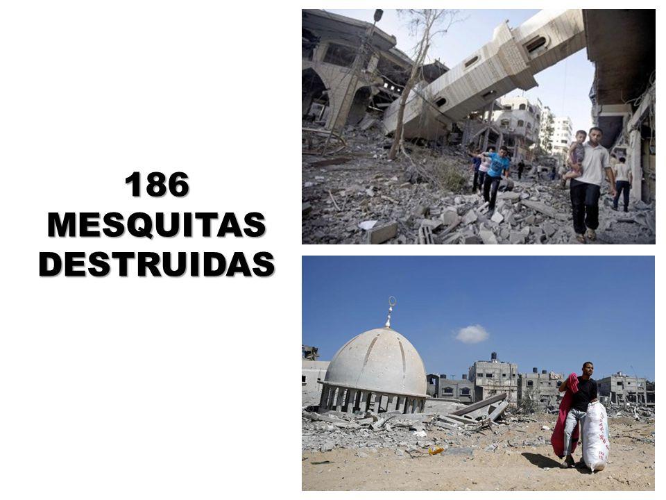 186 MESQUITAS DESTRUIDAS