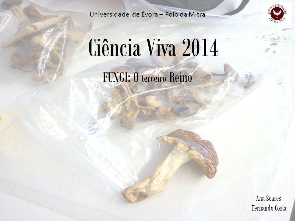 Ciência Viva 2014 FUNGI: O terceiro Reino Ana Soares Fernando Costa Universidade de Évora – Polo da Mitra