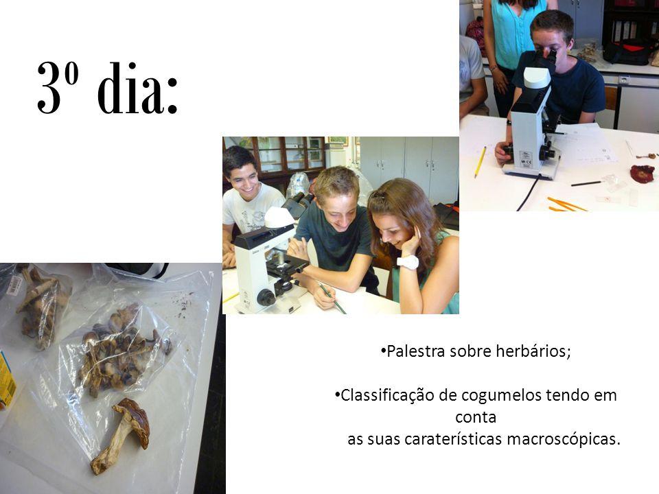 Palestra sobre herbários; Classificação de cogumelos tendo em conta as suas caraterísticas macroscópicas.