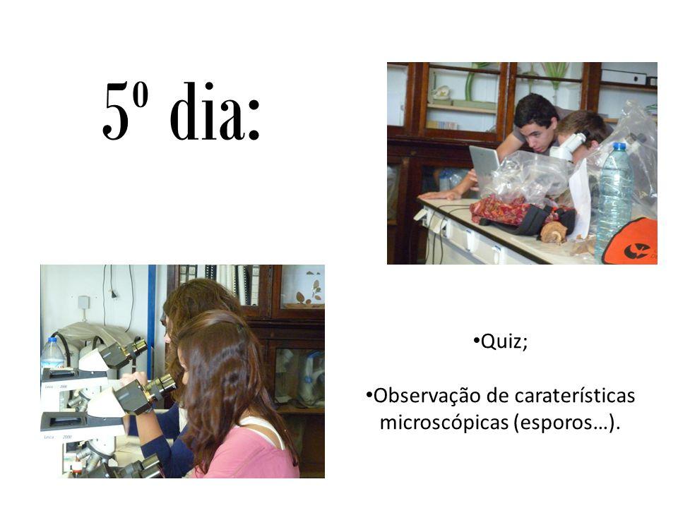 5º dia: Quiz; Observação de caraterísticas microscópicas (esporos…).