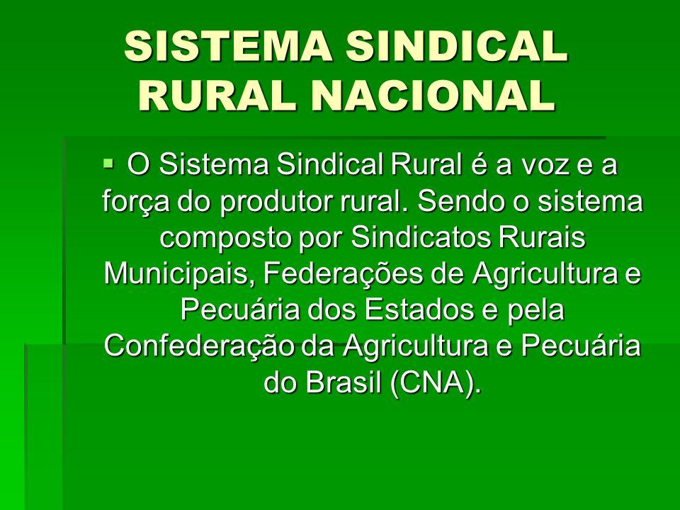  As entidades que compõem o Sistema CNA representam um nível regional e nacional os produtores rurais e a agroindústria no tocante ao setor primário.