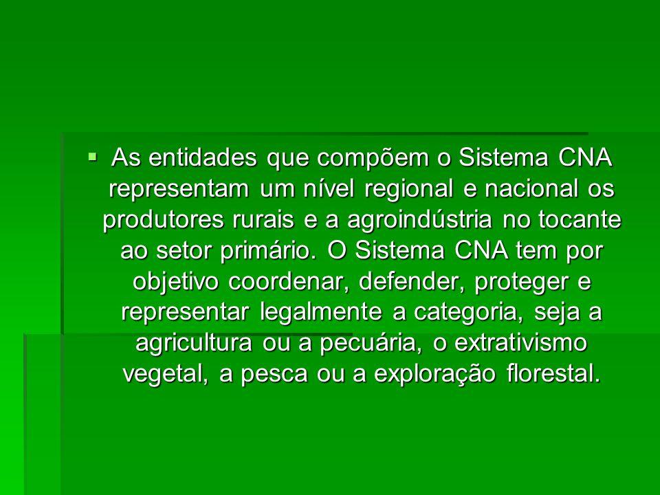  O Sistema Sindical Rural Nacional é constituído por uma estrutura em forma de pirâmide, onde a Confederação da Agricultura e Pecuária do Brasil (CNA) é sua representante máxima.