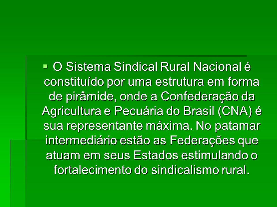  Na base da estrutura estão os Sindicatos Rurais, os quais desenvolvem ações diretas de apoio ao produtor rural, na busca de soluções para os problemas locais de forma associativa.