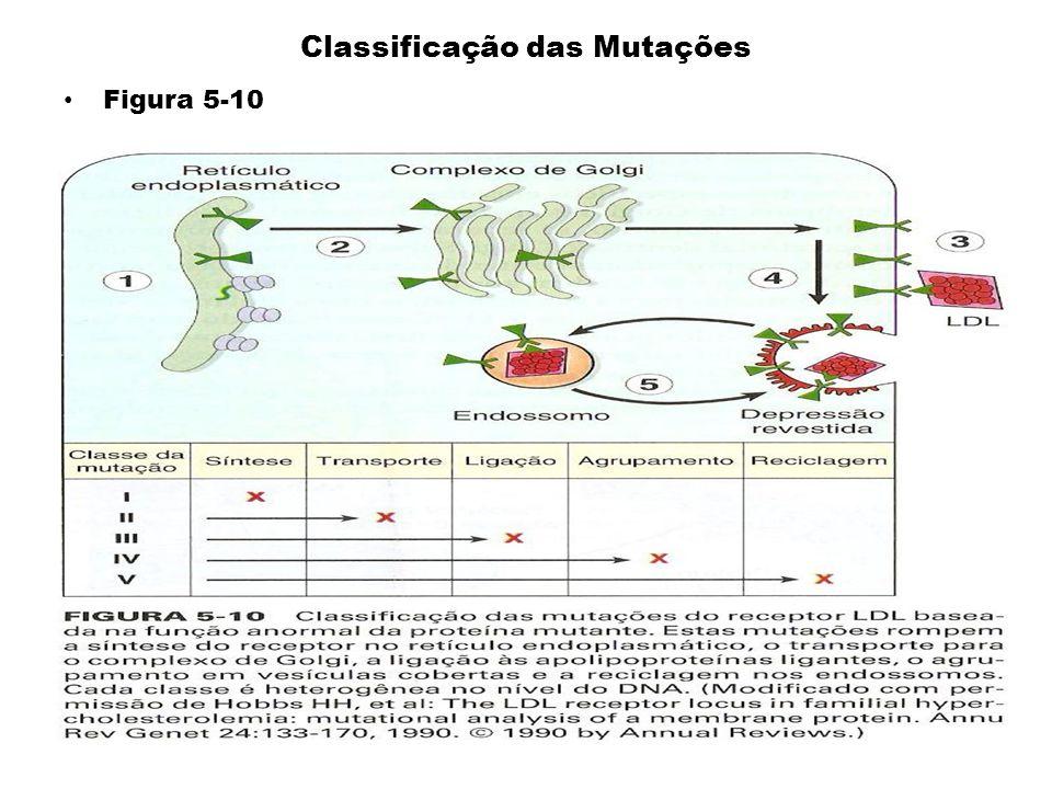 Classificação das Mutações Figura 5-10