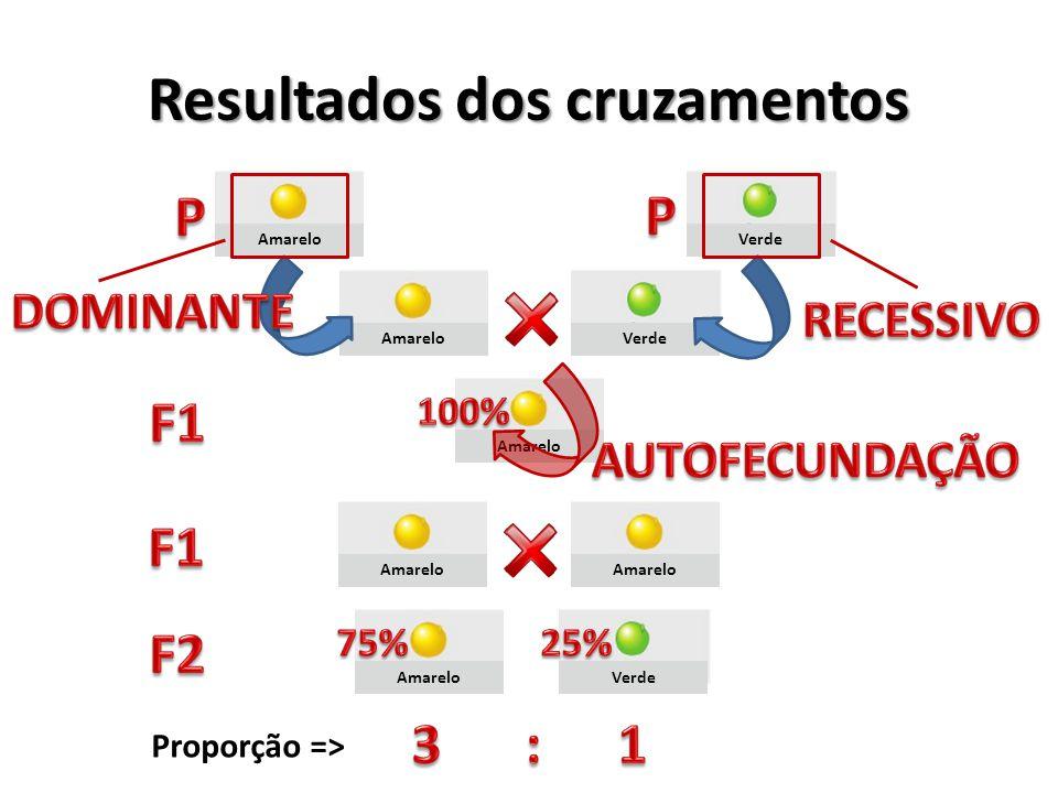 Resultados dos cruzamentos Amarelo Verde Amarelo Verde Proporção =>