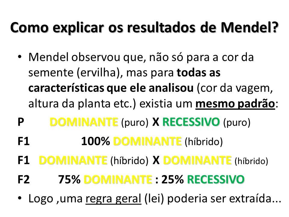Como explicar os resultados de Mendel? Mendel observou que, não só para a cor da semente (ervilha), mas para todas as características que ele analisou