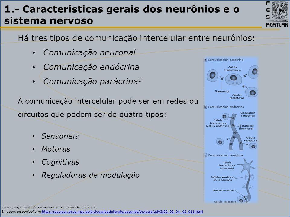 1.- Características gerais dos neurônios e o sistema nervoso Há tres tipos de comunicação intercelular entre neurônios: Comunicação neuronal Comunicação endócrina Comunicação parácrina 1 A comunicação intercelular pode ser em redes ou circuitos que podem ser de quatro tipos: Sensoriais Motoras Cognitivas Reguladoras de modulação 1.