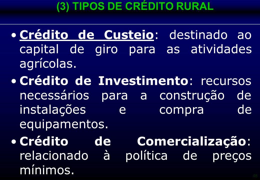 48 (3) TIPOS DE CRÉDITO RURAL Crédito de Custeio: destinado ao capital de giro para as atividades agrícolas. Crédito de Investimento: recursos necessá