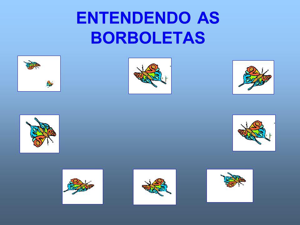 ENTENDENDO AS BORBOLETAS
