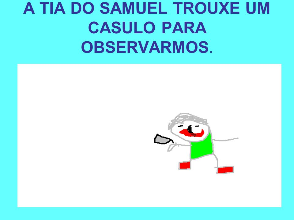 A TIA DO SAMUEL TROUXE UM CASULO PARA OBSERVARMOS.