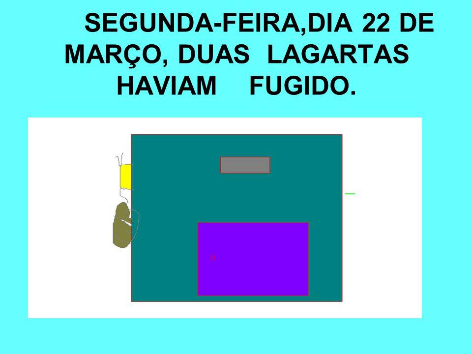 NA SEGUNDA-FEIRA,DIA 22 DE MARÇO, DUAS LAGARTAS HAVIAM FUGIDO.