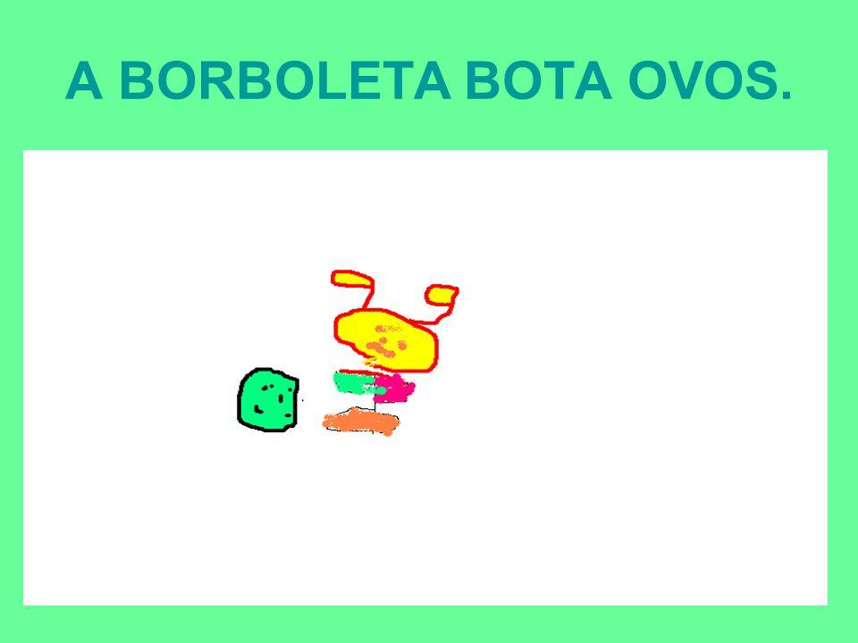 A BORBOLETA BOTA OVOS.