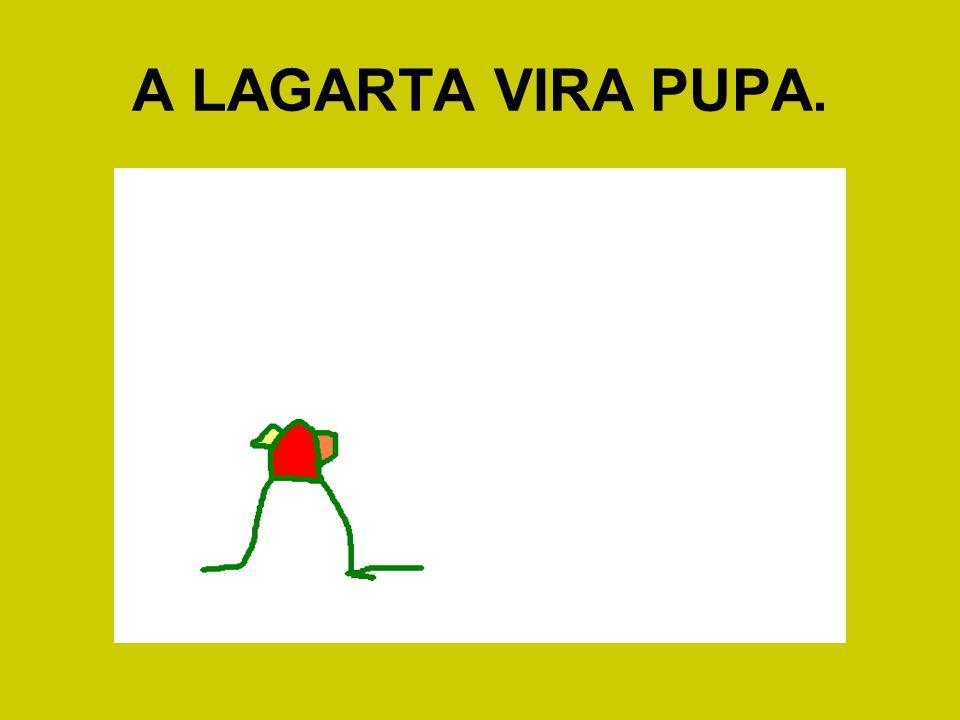 A LAGARTA VIRA PUPA.