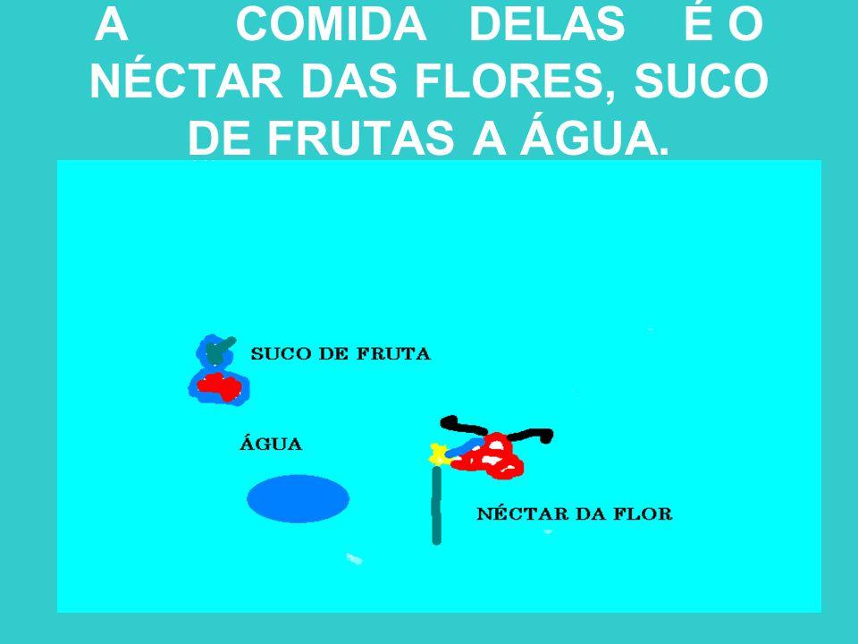 A COMIDA DELAS É O NÉCTAR DAS FLORES, SUCO DE FRUTAS A ÁGUA.