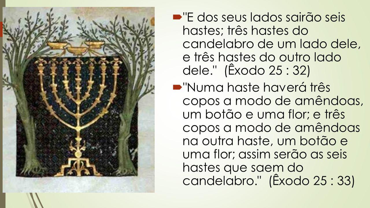  E dos seus lados sairão seis hastes; três hastes do candelabro de um lado dele, e três hastes do outro lado dele. (Êxodo 25 : 32)  Numa haste haverá três copos a modo de amêndoas, um botão e uma flor; e três copos a modo de amêndoas na outra haste, um botão e uma flor; assim serão as seis hastes que saem do candelabro. (Êxodo 25 : 33)