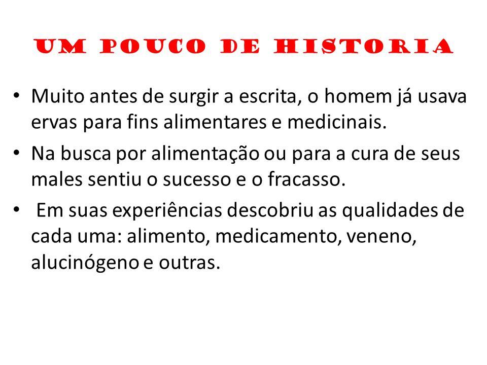 UM POUCO DE HISTORIA Muito antes de surgir a escrita, o homem já usava ervas para fins alimentares e medicinais. Na busca por alimentação ou para a cu