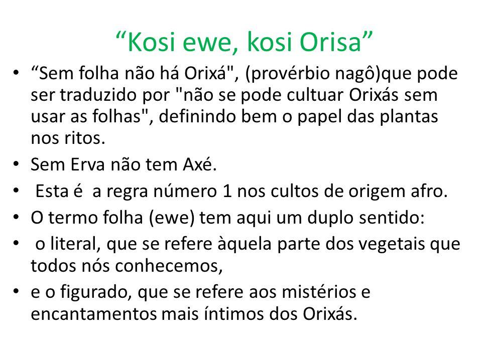 """Kosi ewe, kosi Orisa"" ""Sem folha não há Orixá"