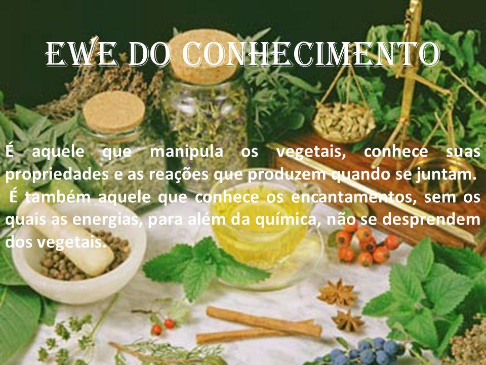 EWE DO CONHECIMENTO É aquele que manipula os vegetais, conhece suas propriedades e as reações que produzem quando se juntam. É também aquele que conhe