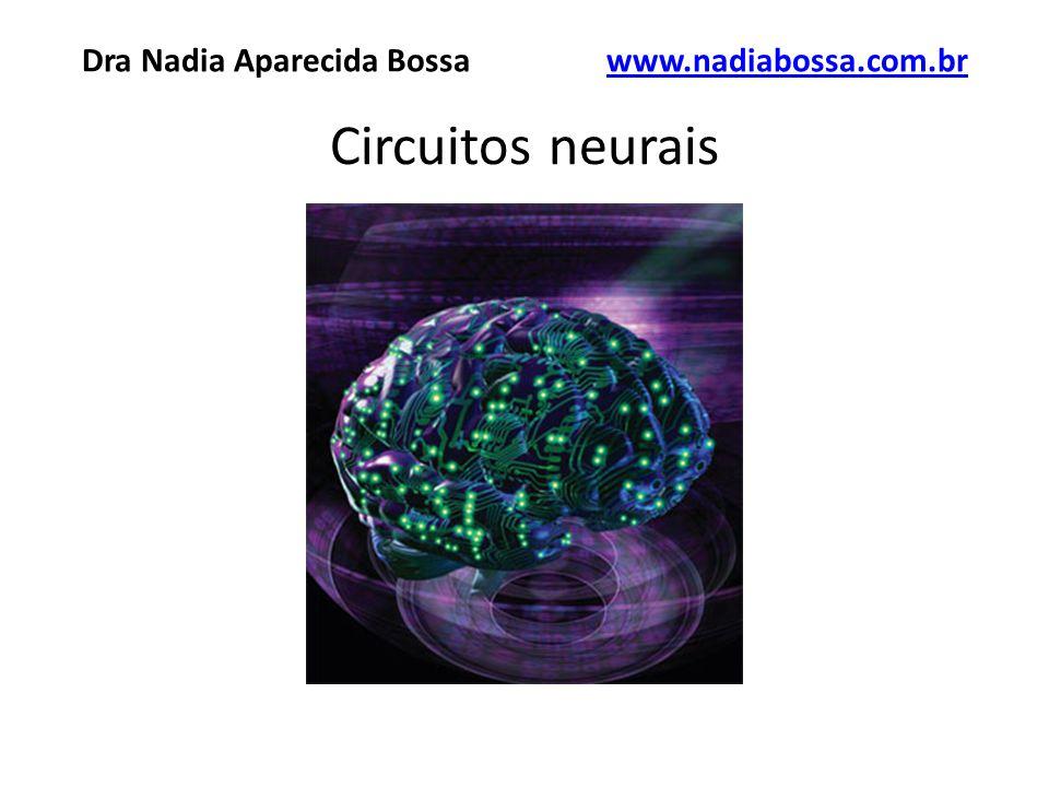 Circuitos neurais Dra Nadia Aparecida Bossawww.nadiabossa.com.brwww.nadiabossa.com.br