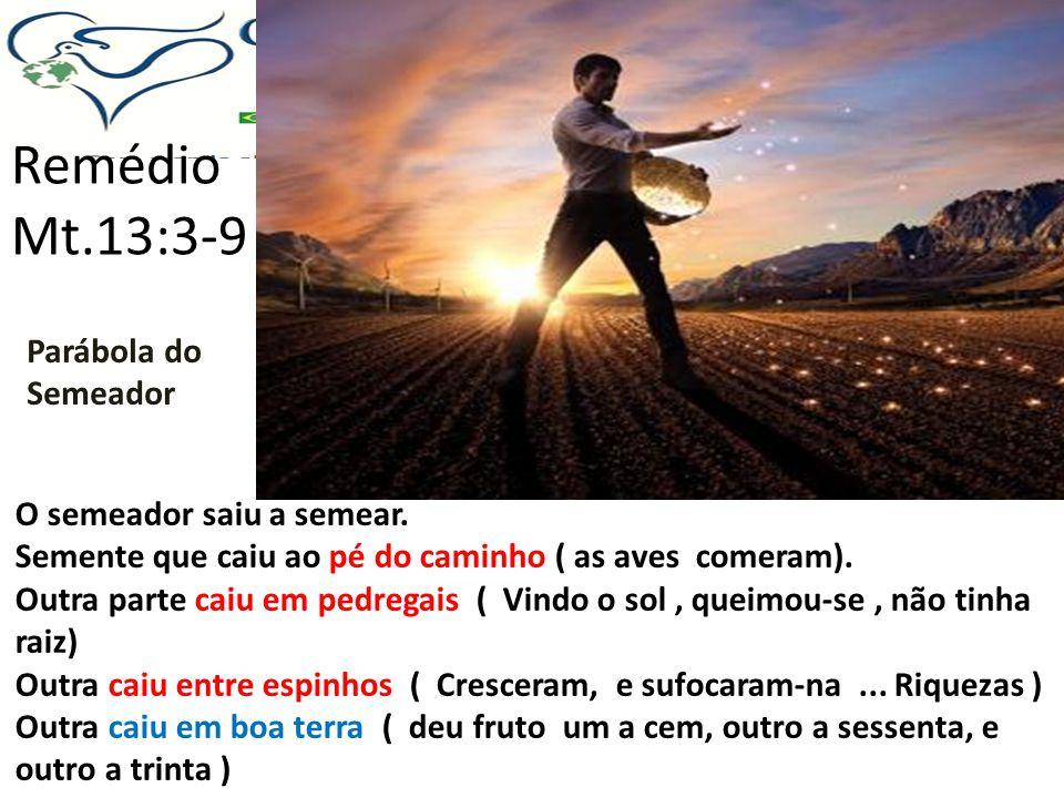 Remédio Parábola da Rede, Mt.13:47 Ide e pregai o evangelho...