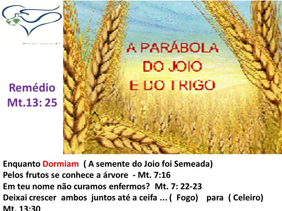 Remédio Mt.13: 25 Enquanto Dormiam ( A semente do Joio foi Semeada) Pelos frutos se conhece a árvore - Mt. 7:16 Em teu nome não curamos enfermos? Mt.