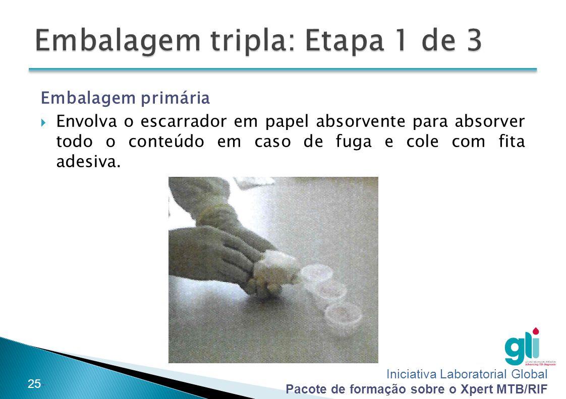 Iniciativa Laboratorial Global Pacote de formação sobre o Xpert MTB/RIF -25- Embalagem primária  Envolva o escarrador em papel absorvente para absorv