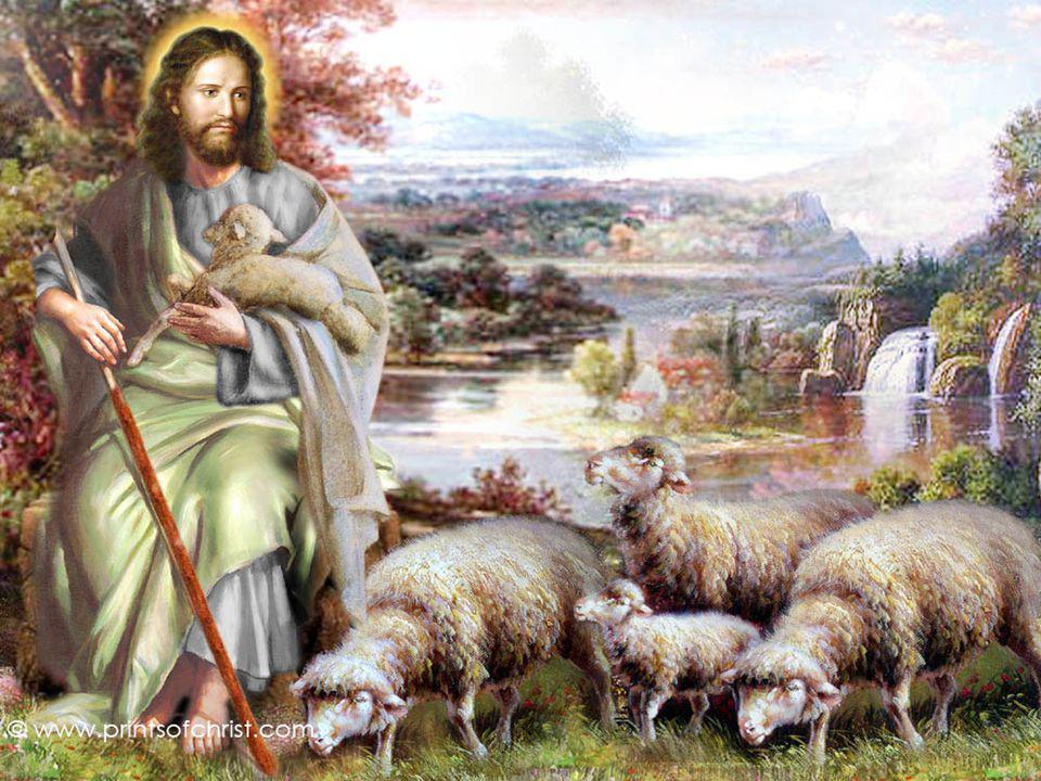Como Cristo desempenha a sua missão de Pastor? Ele conhece as