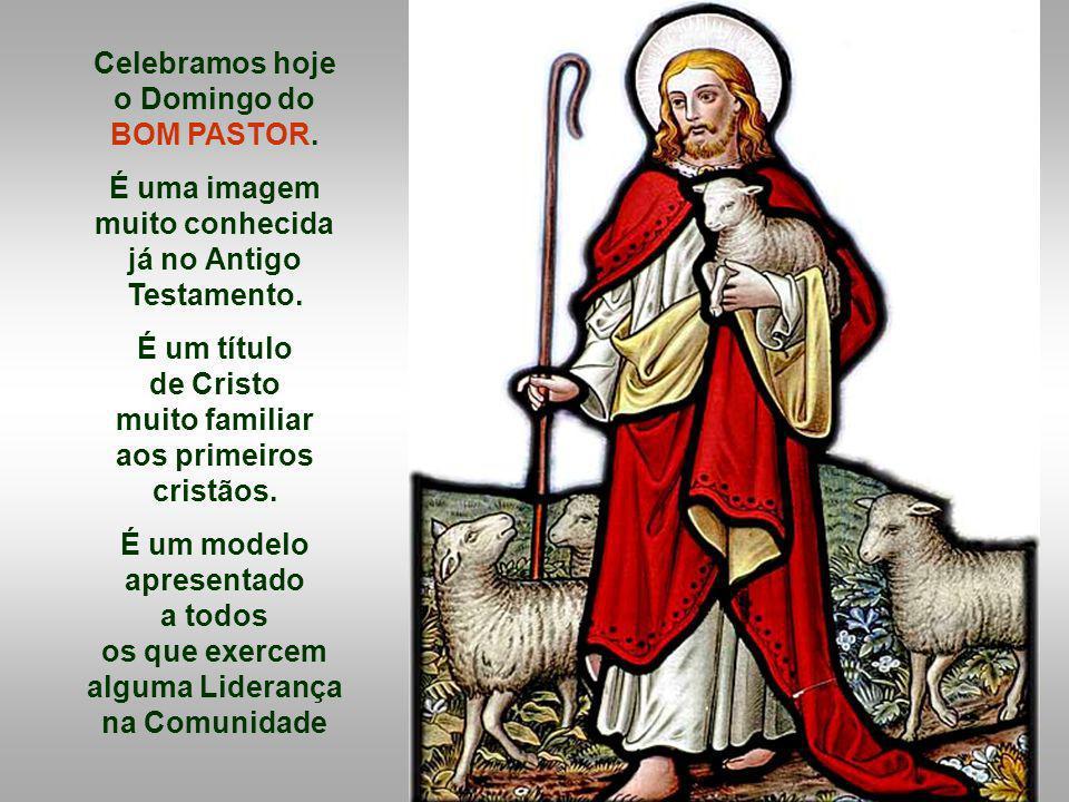 Celebramos hoje o Domingo do BOM PASTOR.É uma imagem muito conhecida já no Antigo Testamento.