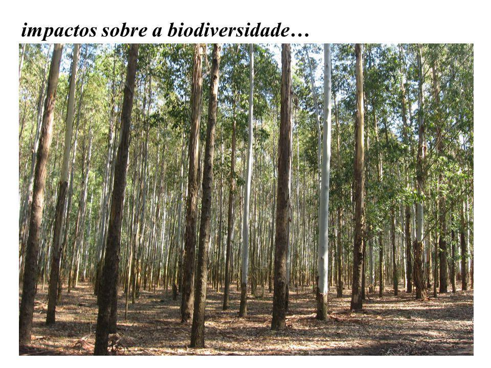 impactos sobre a biodiversidade…