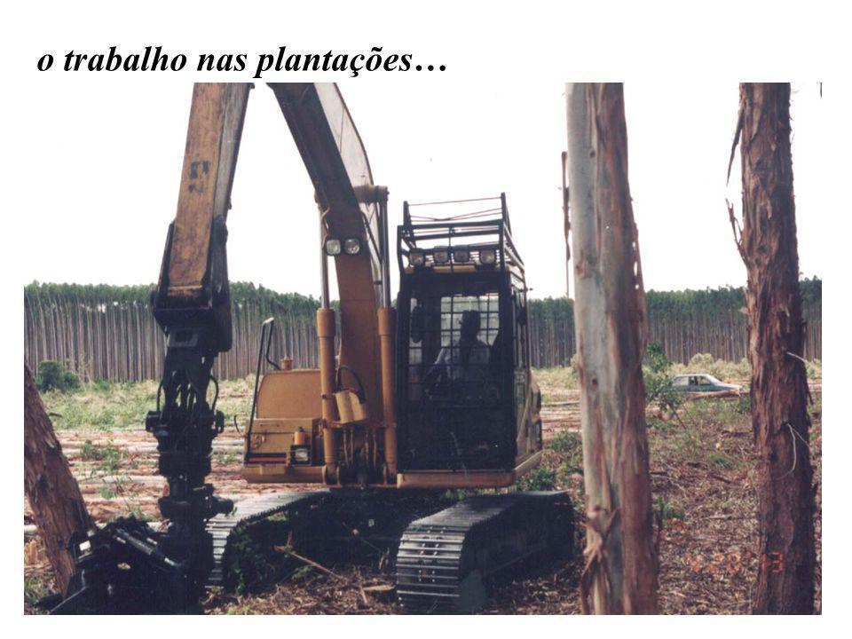 o trabalho nas plantações…