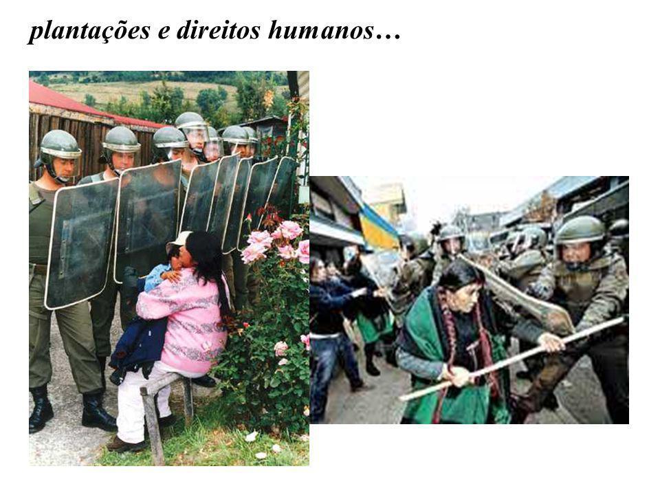 plantações e direitos humanos…