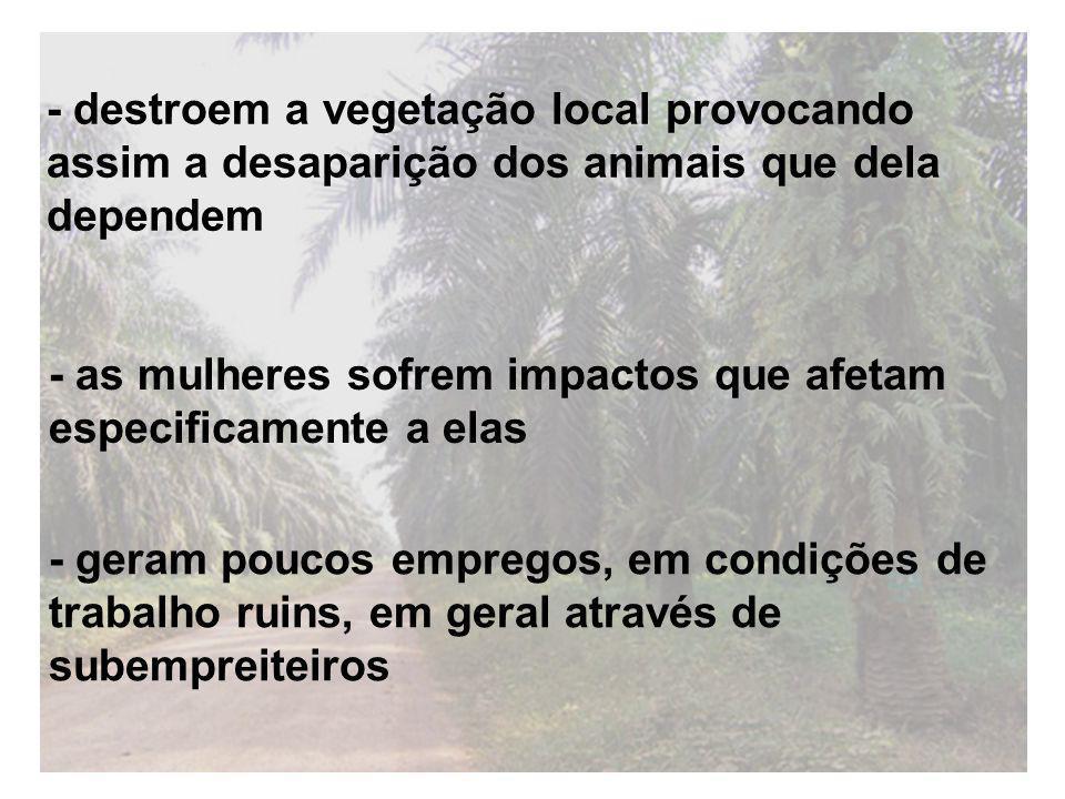 - destroem a vegetação local provocando assim a desaparição dos animais que dela dependem - geram poucos empregos, em condições de trabalho ruins, em geral através de subempreiteiros - as mulheres sofrem impactos que afetam especificamente a elas