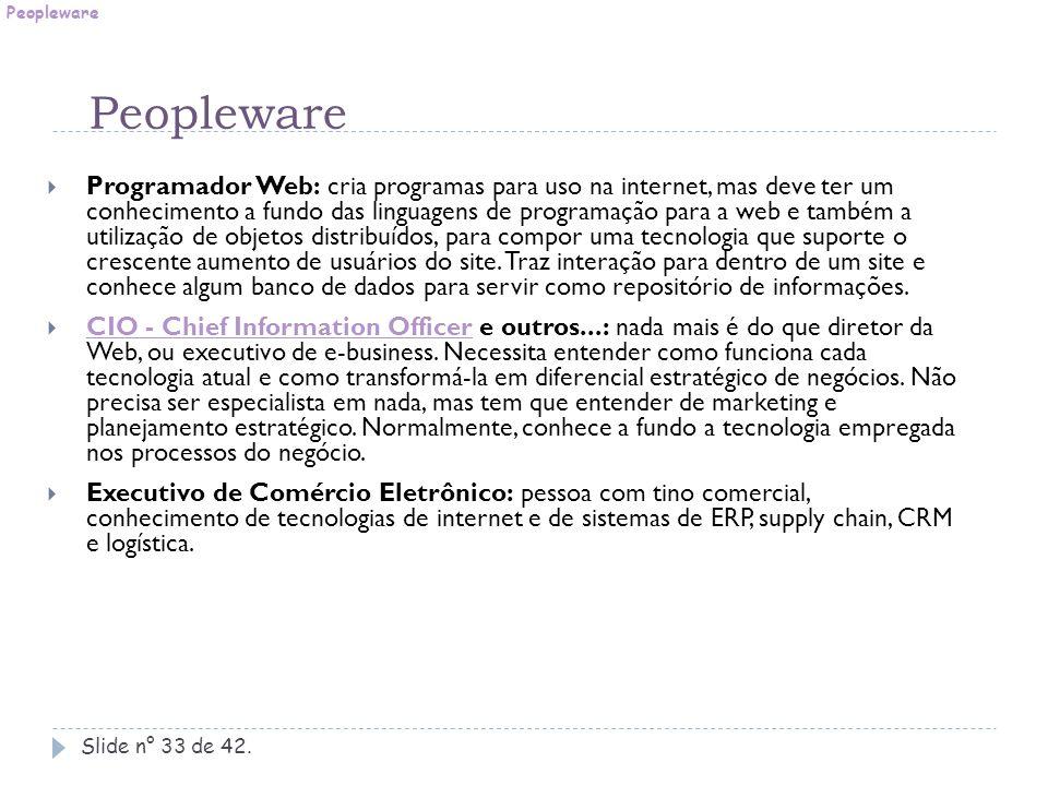 Slide n° 33 de 42.  Programador Web: cria programas para uso na internet, mas deve ter um conhecimento a fundo das linguagens de programação para a w