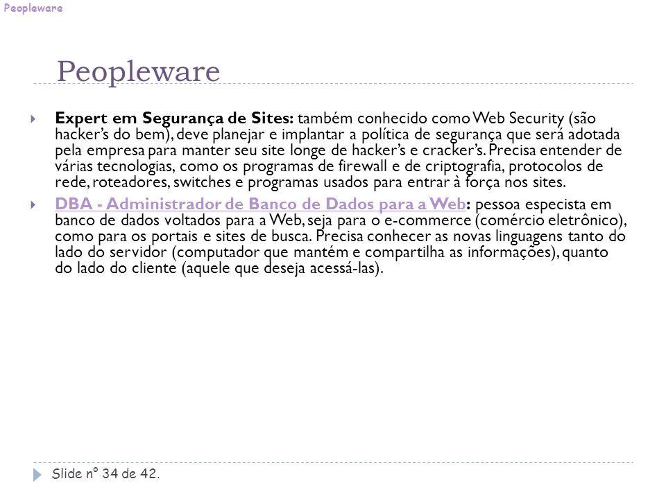 Slide n° 34 de 42.  Expert em Segurança de Sites: também conhecido como Web Security (são hacker's do bem), deve planejar e implantar a política de s