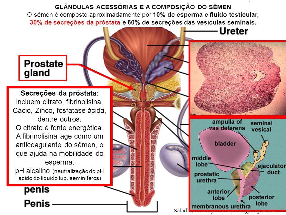Saladin, Anatomy and Physiology, cap. 27, 2002 Secreções da próstata: incluem citrato, fibrinolisina, Cácio, Zinco, fosfatase ácida, dentre outros. O