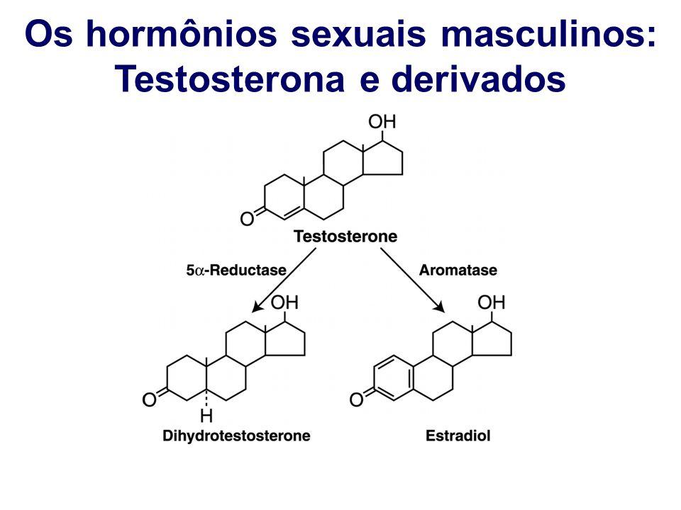 Os hormônios sexuais masculinos: Testosterona e derivados