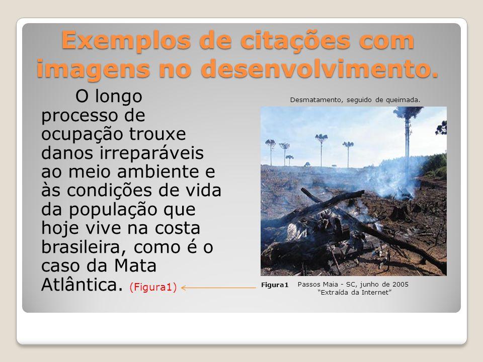 Exemplos de citações com imagens no desenvolvimento.