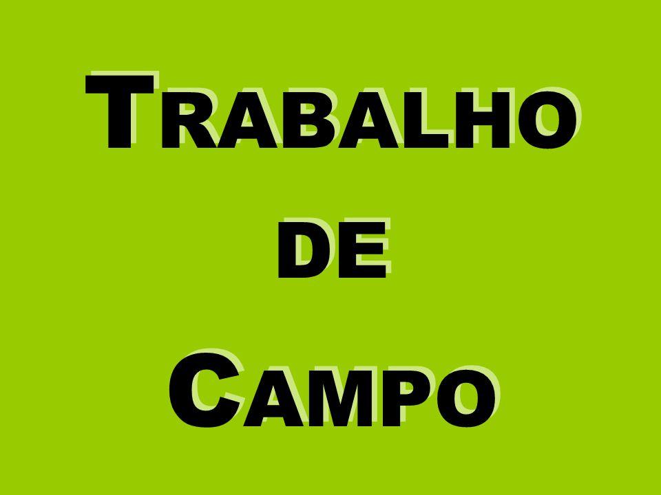T RABALHO DE C AMPO