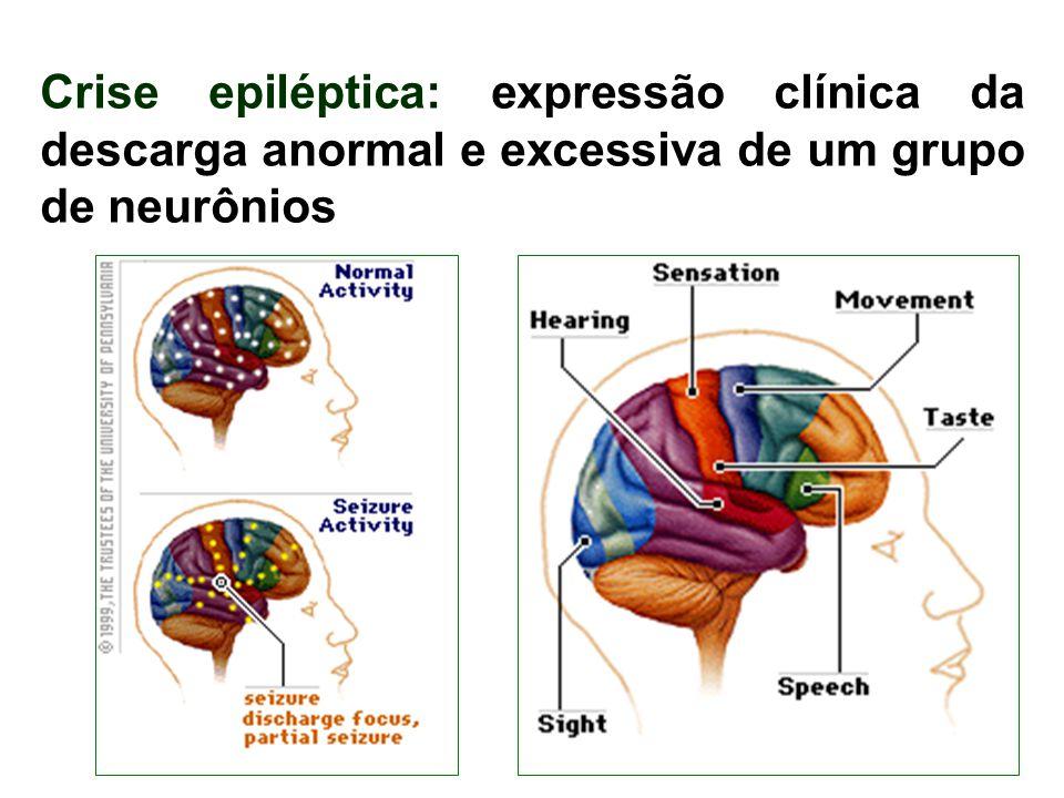 13 Crise epiléptica: expressão clínica da descarga anormal e excessiva de um grupo de neurônios