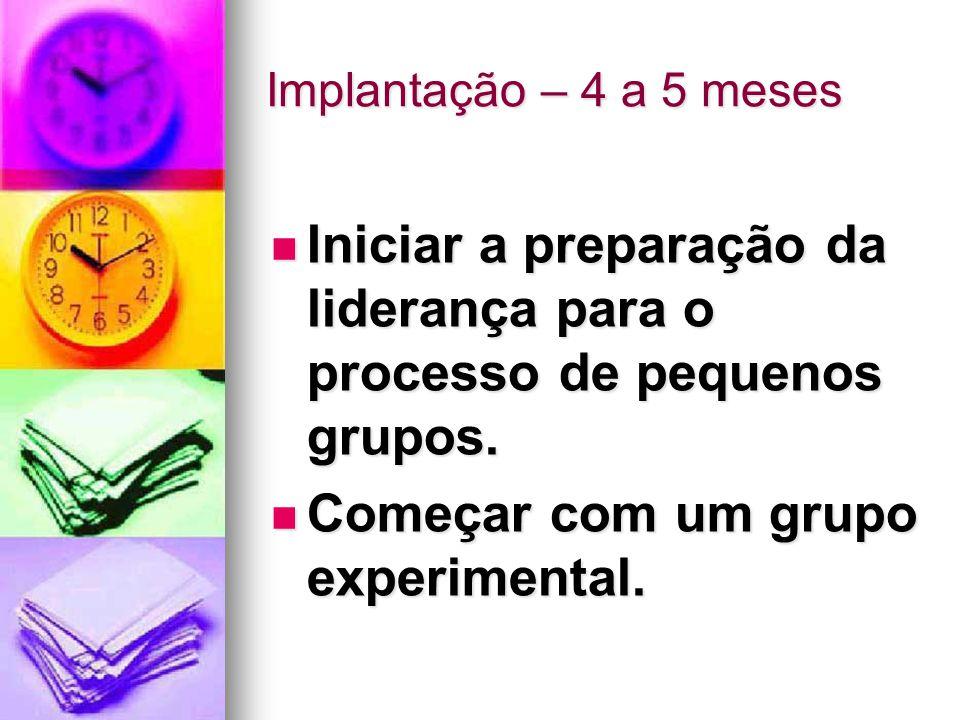 Implantação – 4 a 5 meses Iniciar a preparação da liderança para o processo de pequenos grupos.