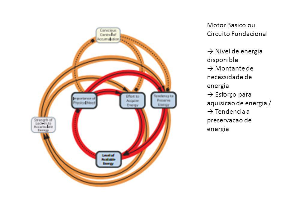 Motor Basico ou Circuito Fundacional → Nivel de energia disponible → Montante de necessidade de energia → Esforço para aquisicao de energia / → Tendencia a preservacao de energia