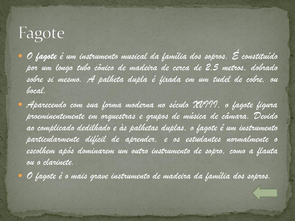 O fagote é um instrumento musical da família dos sopros. É constituído por um longo tubo cônico de madeira de cerca de 2,5 metros, dobrado sobre si me