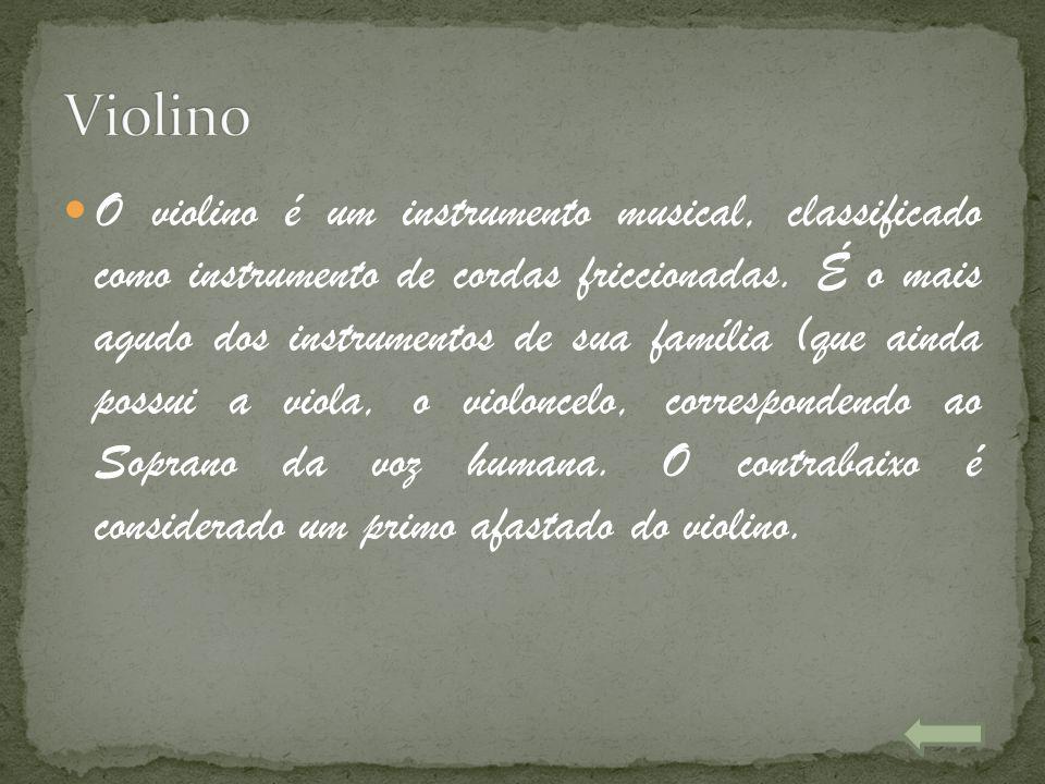 O violino é um instrumento musical, classificado como instrumento de cordas friccionadas. É o mais agudo dos instrumentos de sua família (que ainda po