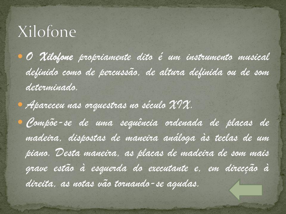 O Xilofone propriamente dito é um instrumento musical definido como de percussão, de altura definida ou de som determinado. Apareceu nas orquestras no