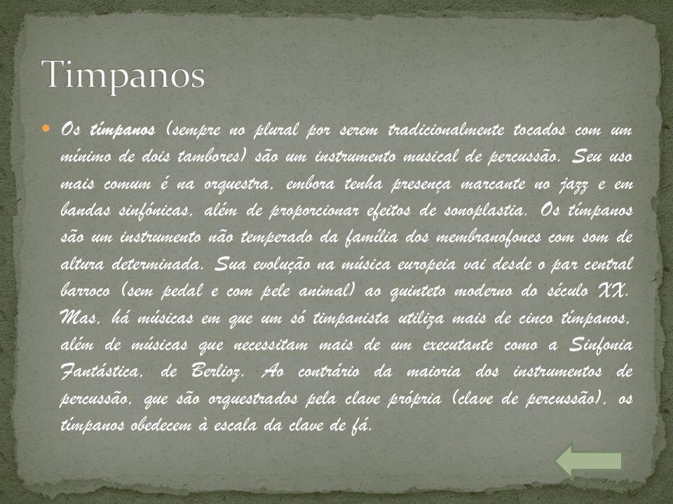 Os tímpanos (sempre no plural por serem tradicionalmente tocados com um mínimo de dois tambores) são um instrumento musical de percussão. Seu uso mais