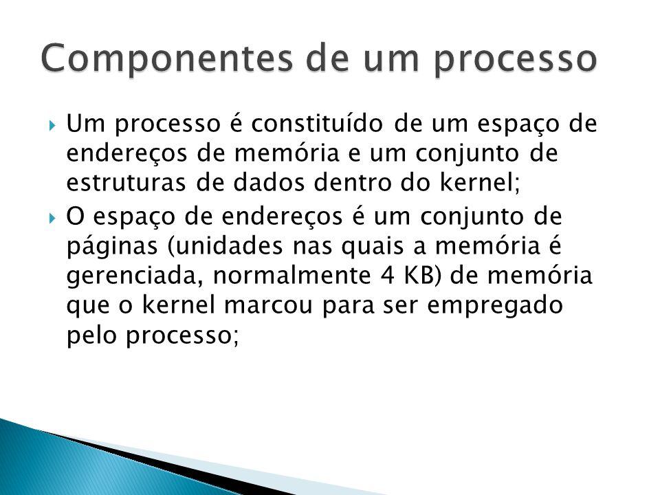  Um processo é constituído de um espaço de endereços de memória e um conjunto de estruturas de dados dentro do kernel;  O espaço de endereços é um conjunto de páginas (unidades nas quais a memória é gerenciada, normalmente 4 KB) de memória que o kernel marcou para ser empregado pelo processo;