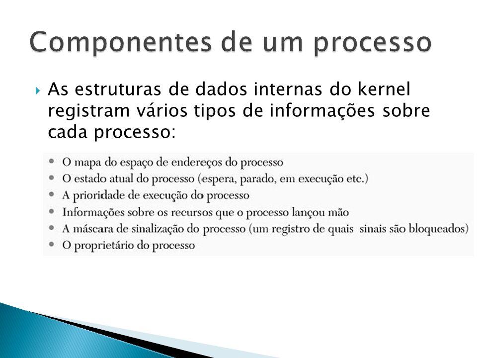  As estruturas de dados internas do kernel registram vários tipos de informações sobre cada processo: