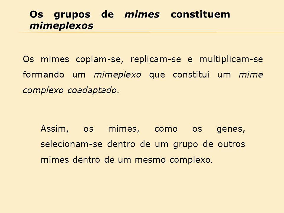 Os grupos de mimes constituem mimeplexos Os mimes copiam-se, replicam-se e multiplicam-se formando um mimeplexo que constitui um mime complexo coadapt